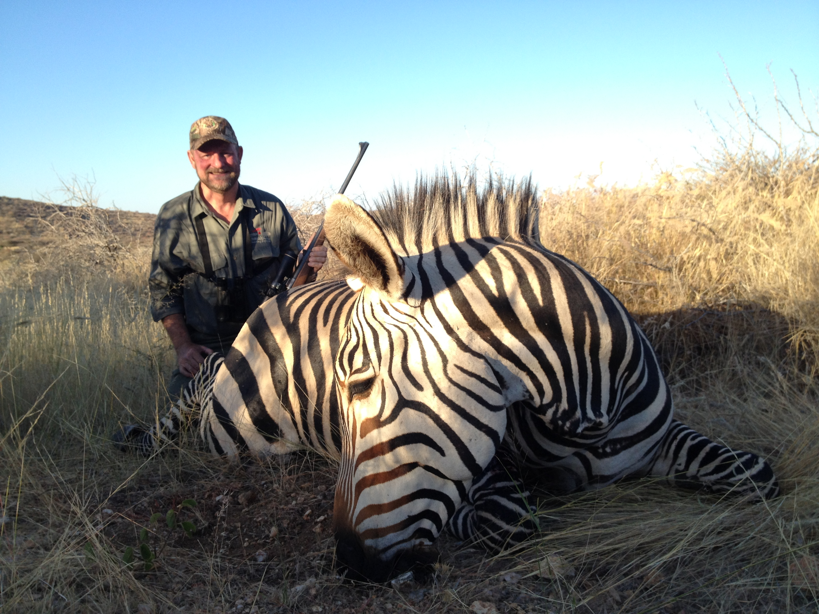 Jim Mraz Mountain Zebra